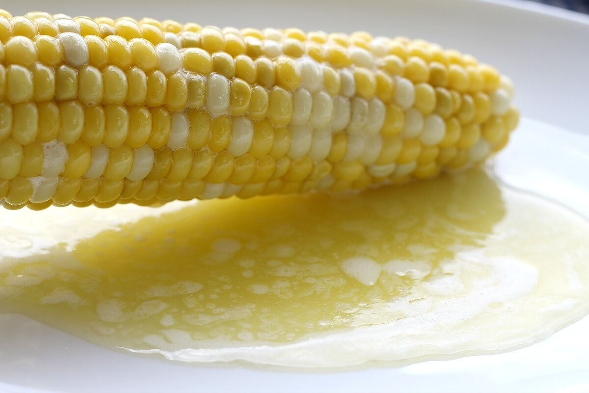 Image of ear of cooked corn above melted butter