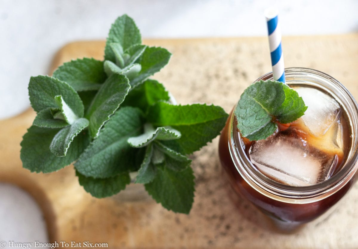Sprigs of spearmint leaves next to a mason jar of iced tea with a straw,