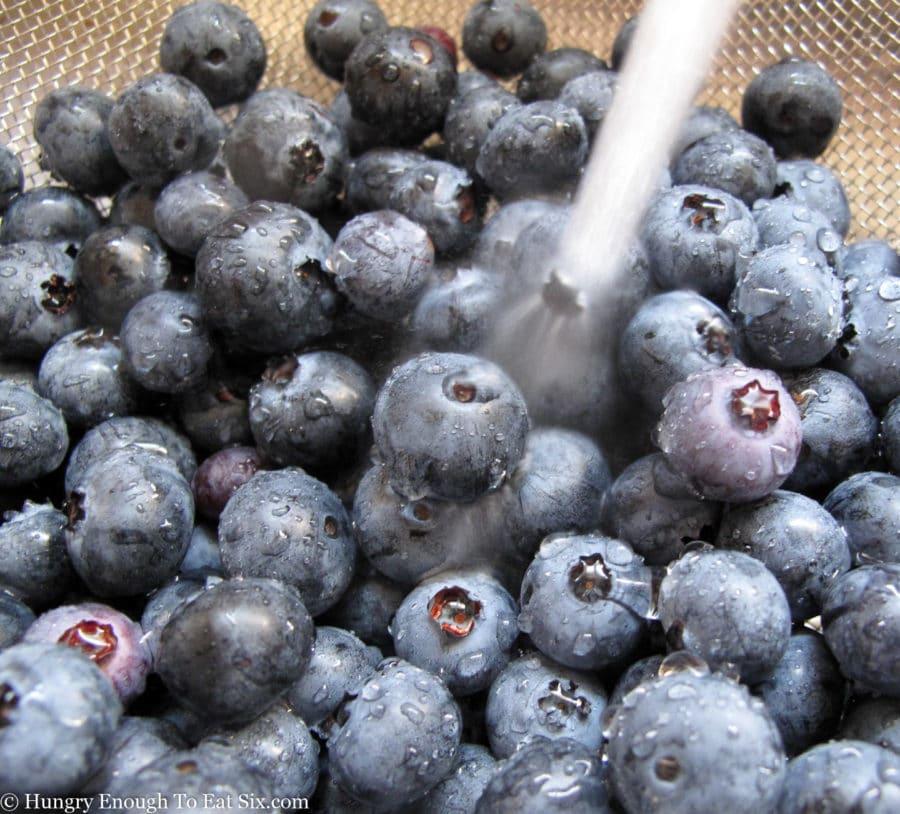 blueberries in a colander under running water.