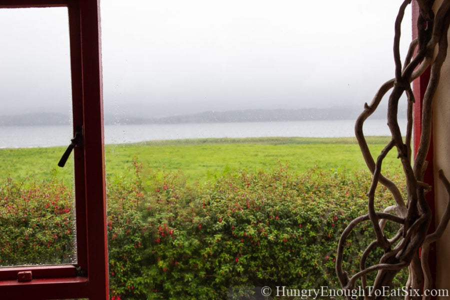 Image from the window of an Irish thatched cottage