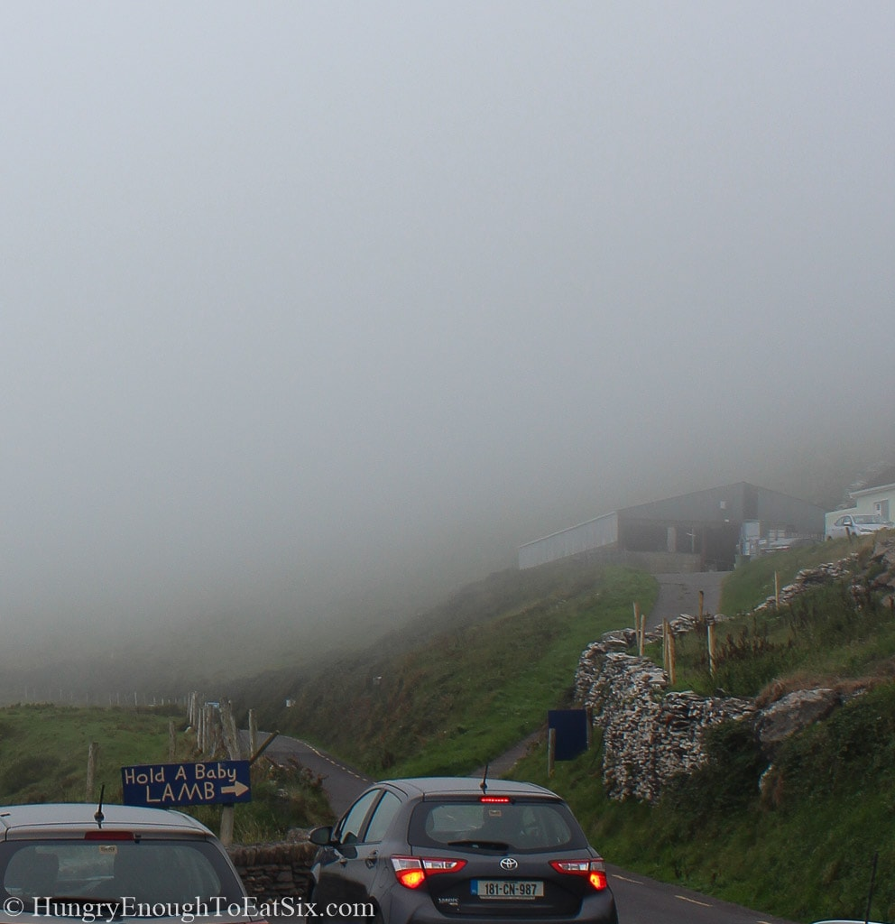 Cars parking in a foggy street by a green hill