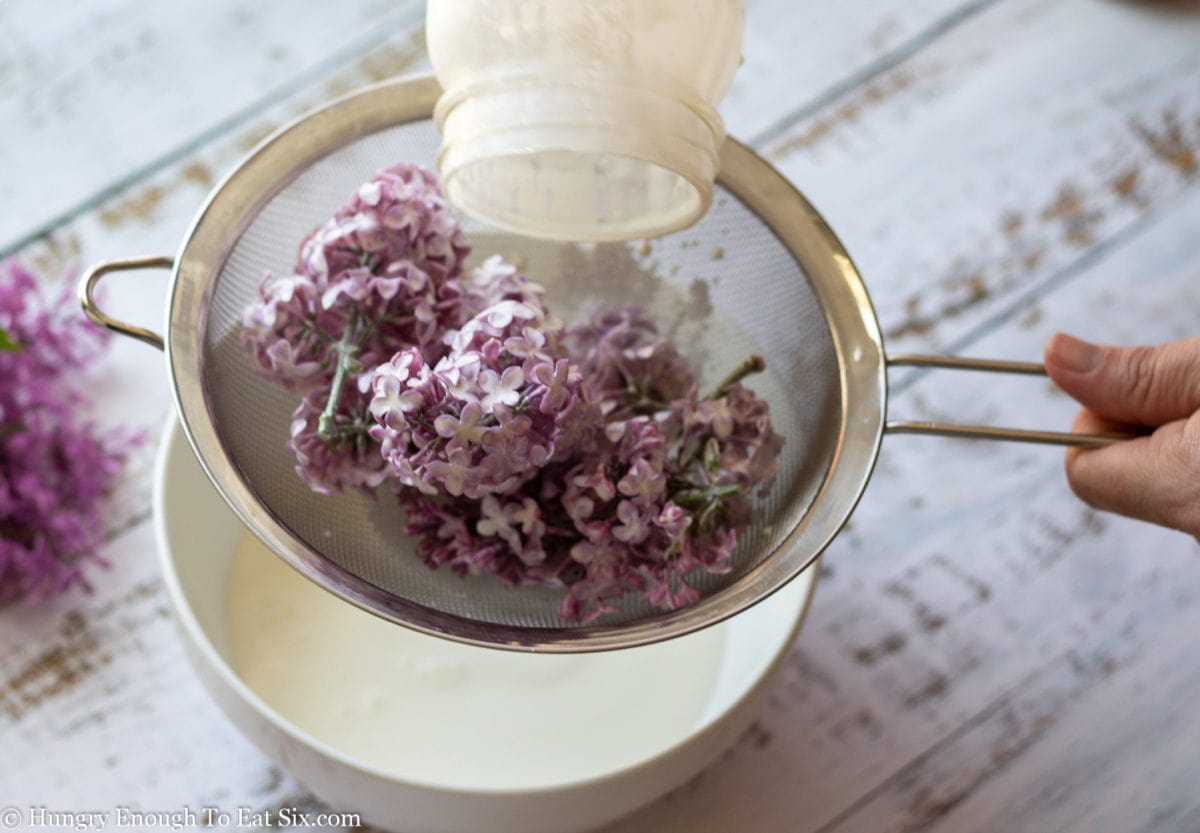 Strainer over white bowl, with lilacs in strainer and cream in bowl.
