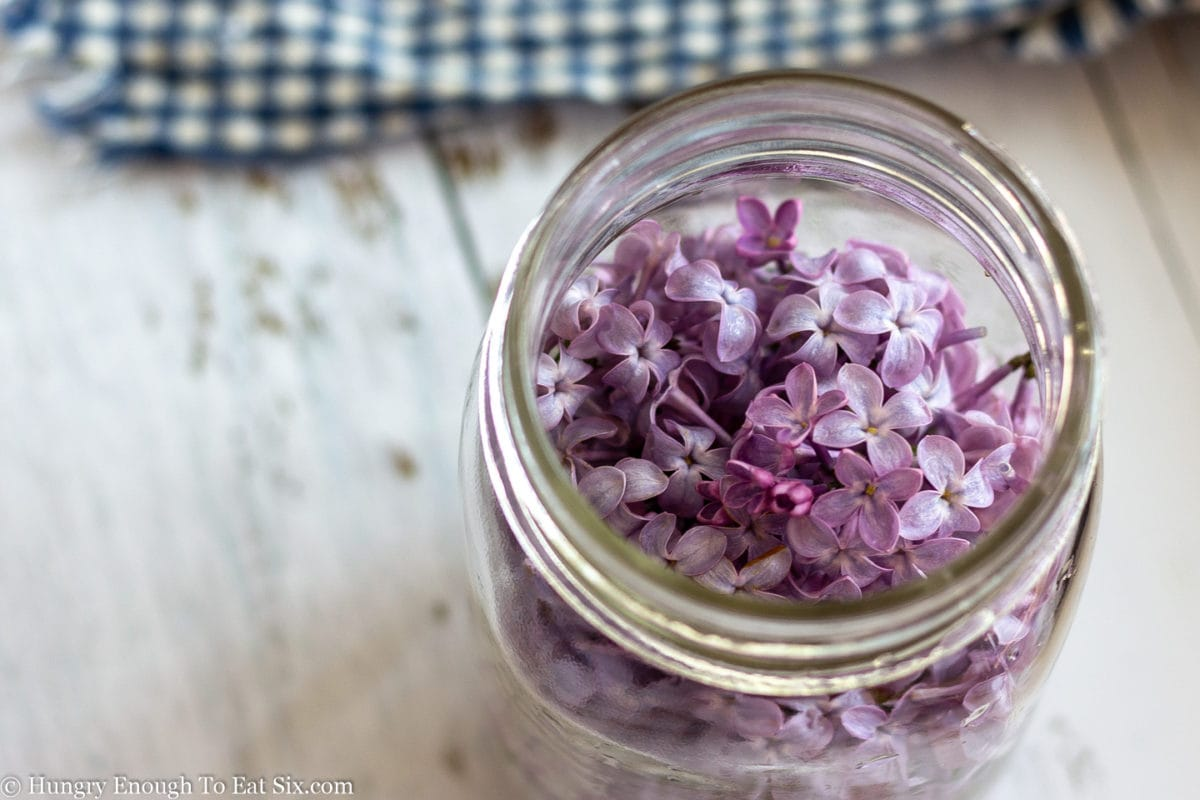 Jar holding whipping cream with lilacs layered on top.