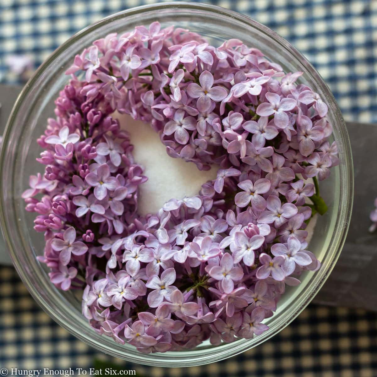 Sprigs of purple lilac laying over white sugar in a bowl.